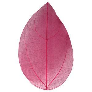 Сухой лист Mart розовый 13