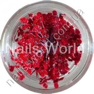 Сухоцветы Nails World веточки красные