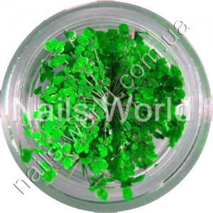 Сухоцветы Nails World веточки зеленые