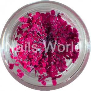 Сухоцветы Nails World веточки бордо