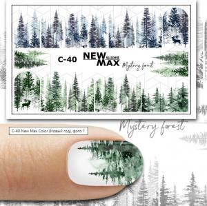 Слайдер-дизайн для ногтей New Max C-40