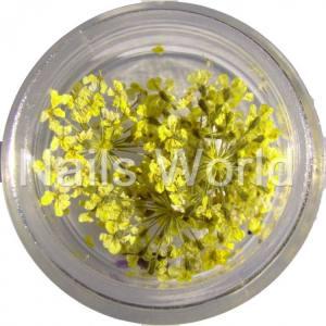 Сухоцветы Nails World веточки лимонные