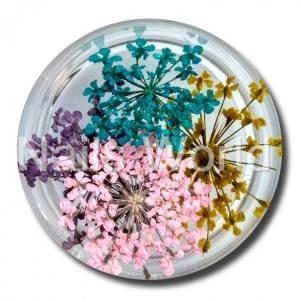 Сухоцветы Nails World веточки микс 5