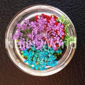 Сухоцветы Nails World веточки микс 1