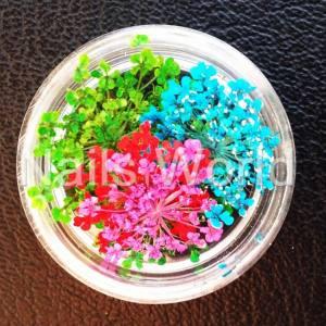 Сухоцветы Nails World веточки микс 2