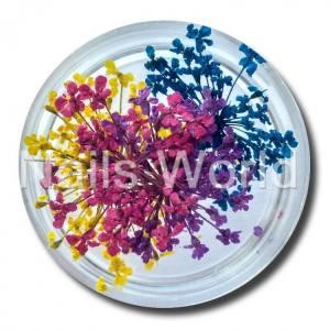 Сухоцветы Nails World веточки микс 8