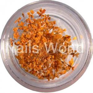 Сухоцветы Nails World веточки оранжевые