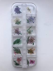 Набор сухоцветов в контейнере №2