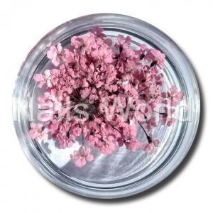 Сухоцветы Nails World веточки светло-розовые