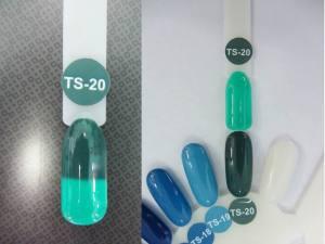 Термо гель-лак Nice 8мл TS20