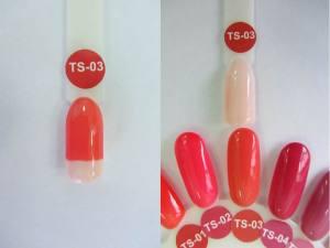 Термо гель-лак Nice 8мл TS03