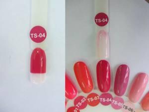 Термо гель-лак Nice 8мл TS04