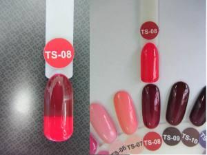 Термо гель-лак Nice 8мл TS08