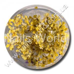 Сухоцветы Nails World веточки желтые
